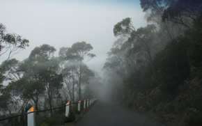 Картинка Foggy road, Mt Wellington, Tasmania