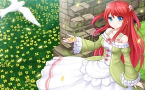 Картинка девушка, цветы, птица, лепестки, anime, art, Re: Zero kara Hajimeru Isekai Seikatsu, Thearesia van Astrea