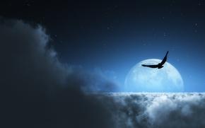 Картинка звезды, облака, птица, луна