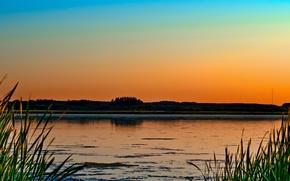 Картинка трава, деревья, закат, природа, озеро, болото, вечер