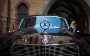 Обои значок, Mercedes-Benz, капот, решётка