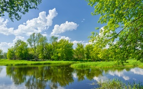 Обои небо, трава, облака, деревья, пейзаж, природа, зелено