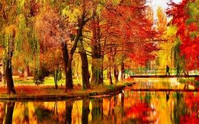 Обои осень, деревья, мост, пруд, парк