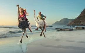 Картинка море, женщина, игра, Берег, мужчина, двое, страусы