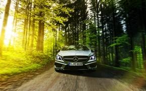 Картинка Mercedes-Benz, AMG, Sun, Summer, Road, Forest, Drive, CLA45