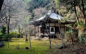 Картинка крыша, деревья, храм, Japan
