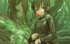 Картинка дерево, тюльпан, мох, куртка, кора, art, kino no tabi, в лесу, kouhaku kuroboshi, kino, путешествие …
