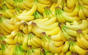 Картинка текстура, бананы, фрукты, много, Fruit, Bananas