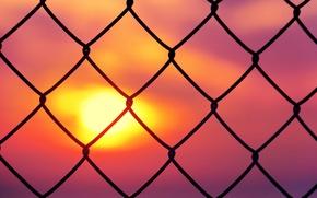 Обои небо, солнце, закат, фон, сетка, розовый, обои, настроения, забор, ограда, ограждение, wallpaper, sunset, широкоформатные, background, ...