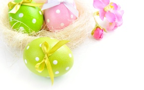 Картинка фото, Три, Пасха, Яйца, Праздник, Бантик