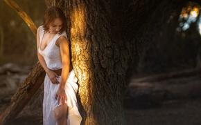 Обои девушка, платье, декольте, ножка, солнечный свет, Studio Hors-champ, Bea