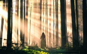 Картинка лес, девушка, лучи, деревья, Lizzy Gadd, Sleepwalking
