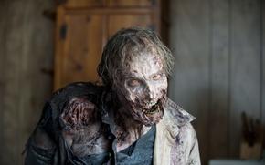 the walking dead, zombie, makeup, fear обои