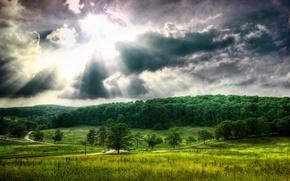 Картинка облака, деревья, Поле