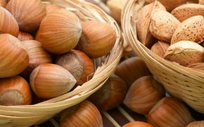 Обои вкуснятина, фундук, Орехи, лесные, косточки