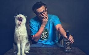 Картинка Бутылка, Кот, Jack Daniels, Джек Дэниэл, Очки.