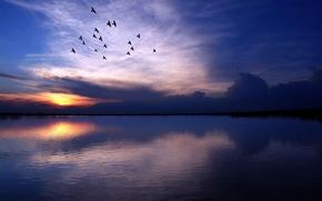 Картинка небо, вода, закат, птицы, тучи, природа