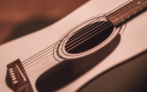 Картинка музыка, гитара, струны, инструмент, марко, укулеле