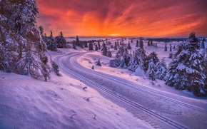Картинка зима, дорога, Норвегия, санный путь