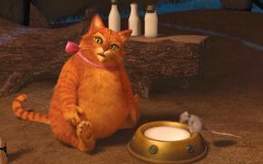 Обои толстяк, лапуль, бант, рыжий, кот, Шрек навсегда
