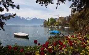 Картинка горы, природа, озеро, фото, Швейцария, тюльпаны, Montreux