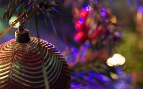 Картинка макро, праздник, игрушка, ёлка