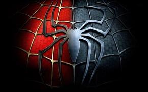 Картинка паутина, паук, эмблема, Spider-Man