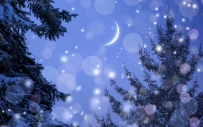 Обои Зима, Ель, Небо, Луна, Природа