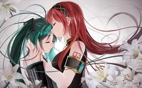 Обои цветы, hatsune miku, арт, аниме, поцелуй, okingjo, megurine luka, девушки, vocaloid