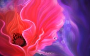 Обои цветок, капля, мак, линии, арт