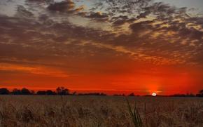 Картинка поле, небо, солнце, облака, закат