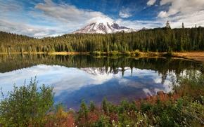 Картинка лес, небо, деревья, горы, природа, озеро, отражение, панорама