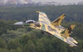 Обои Су-35, полет, скорость, лес