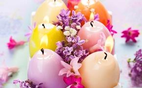 Картинка свечи, сирень, candles, lilac