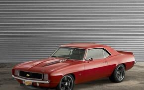 Картинка Chevrolet, Camaro, Jackson, LSX, Reggie