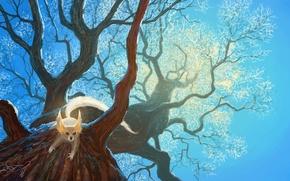 Картинка Природа, Дерево, Рисунок, Белка, Сергей Свистунов, Sergey Svistunov