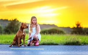 Картинка асфальт, собака, девочка, Dog and Girl