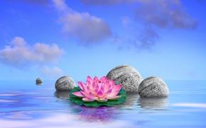 Картинка небо, вода, облака, камни, листочки, цветочки, лотосы