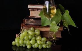 Картинка стол, вино, бокал, книги, виноград, лиана, пища для ума