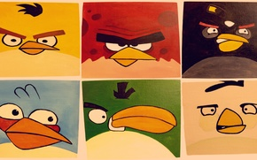 Картинка птицы, игра, apple, iphone, картинка, ipad, angry birds