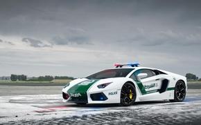 Картинка Lamborghini, Car, Dubai, Police, LP700-4, Aventador