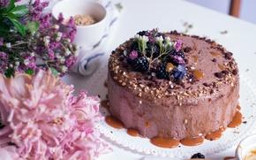 Картинка цветы, торт, орехи, крем, ежевика, пионы, карамель