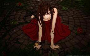 Картинка вода, девушка, аниме, лотос, кросс, рыцарь вампир, vampire knight, Юки