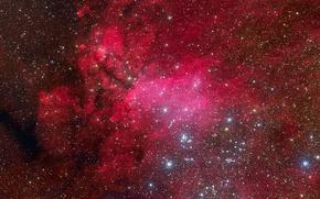 Обои Скорпион, эмиссионная туманность, IC 4628, созвездие