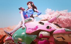 Картинка девушка, пистолет, танк, overwatch, D.Va, Hana Song