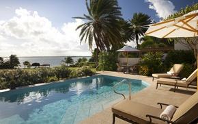Картинка пальмы, вилла, бассейн, сад