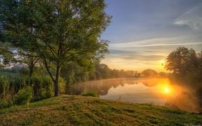 Обои деревья, озеро, закат