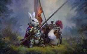Картинка кролик, морская свинка, рыцарь, art
