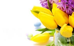 Обои фото, Крупным планом, Цветы, Гиацинты, Тюльпаны