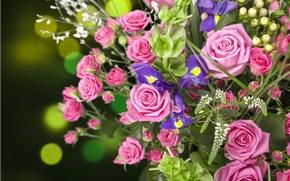 Картинка розы, букет, бутоны, ирисы